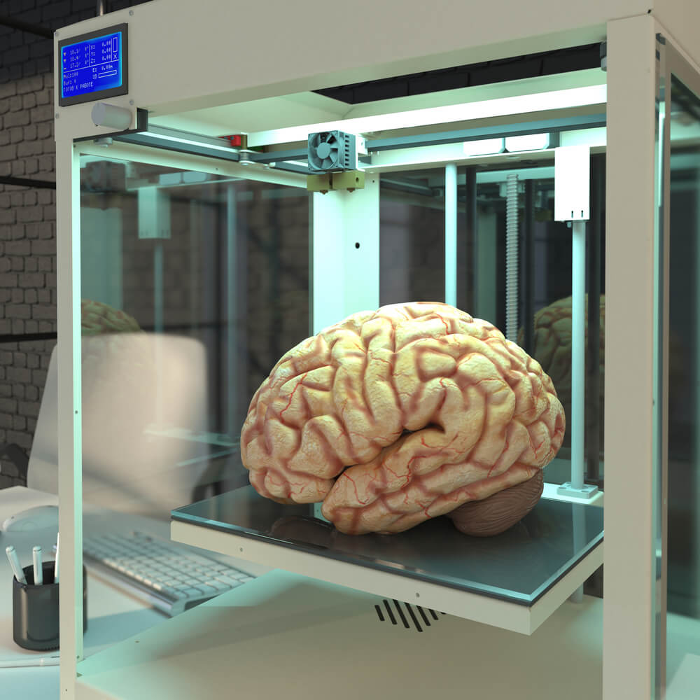 human brain printed
